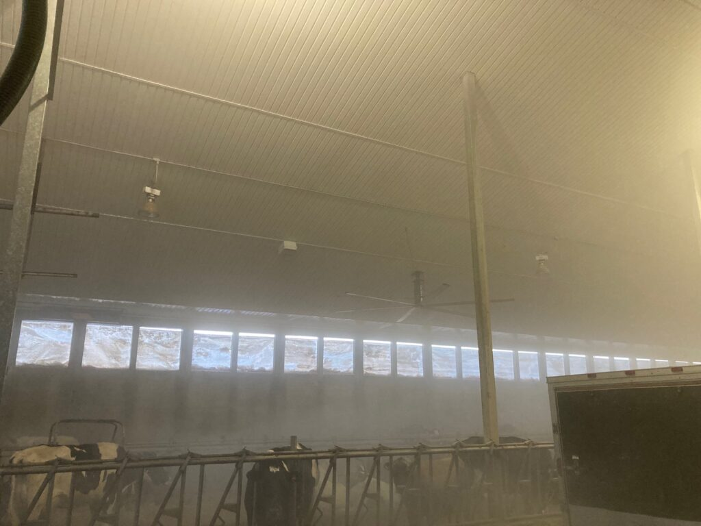 Red deer pressure washing services cleaning Thornspicy Dairy